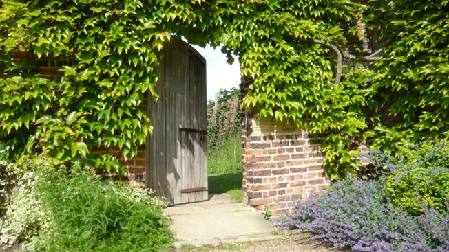 Harewood-Walled-Garden-Harewood-House-and-Gardens-photo-credit-Aimee-Rawson-1024x577